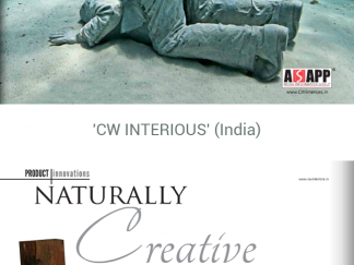 cw-interious